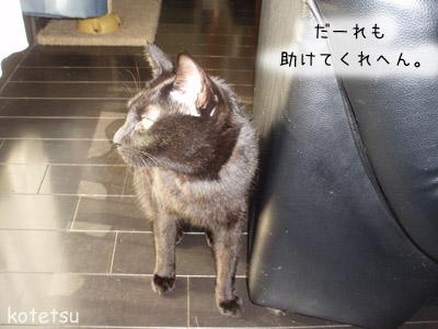 c0132438_2010406.jpg