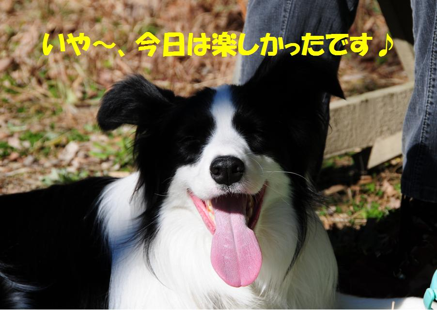 c0147241_1154538.jpg