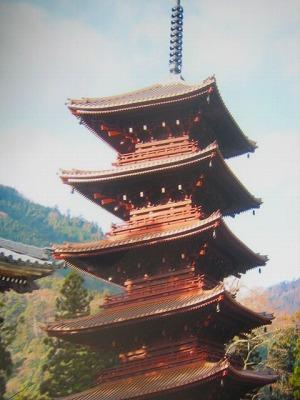 麻機村塾(地域おこし)の新年会を愉しむ_b0011584_5511449.jpg