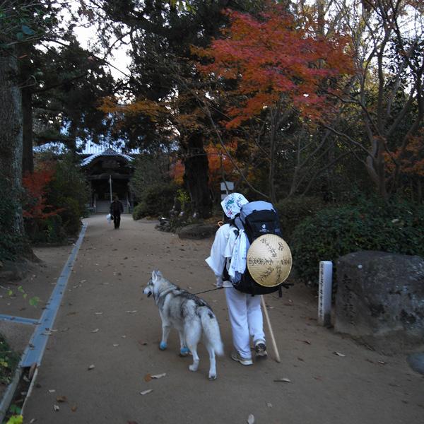 12月3日 おへんろ23日め♪ by GX100_c0049299_19222760.jpg