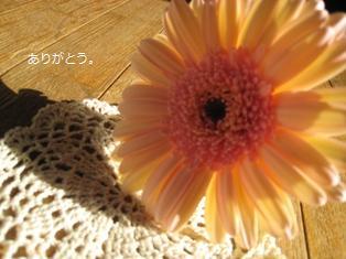 f0171002_10281889.jpg