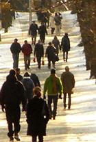 雪景色のセントラルパーク_b0007805_1410254.jpg