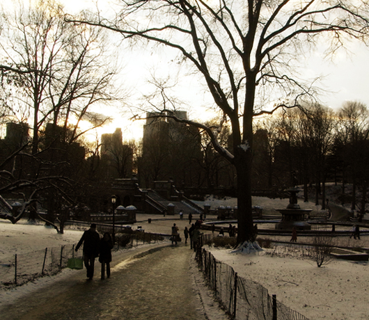 雪景色のセントラルパーク_b0007805_1450057.jpg