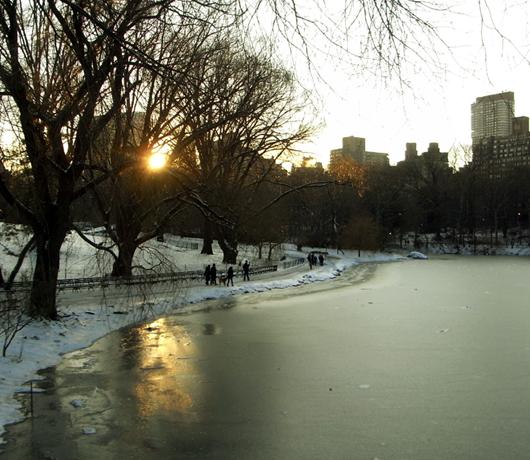 雪景色のセントラルパーク_b0007805_14504820.jpg