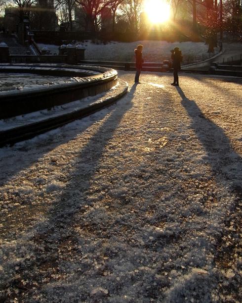 雪景色のセントラルパーク_b0007805_14511791.jpg
