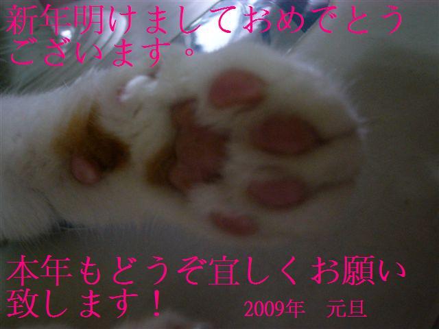 d0068807_1827374.jpg