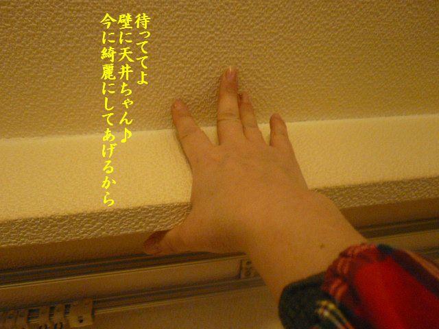e0094407_1423673.jpg