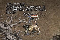 f0178315_2355411.jpg