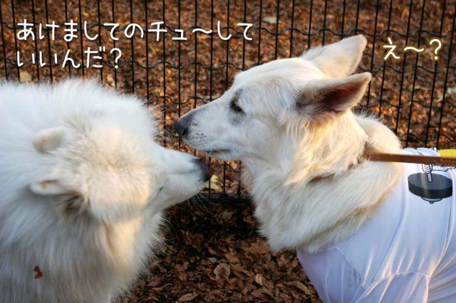 大好きおっきな公園_c0062832_1659293.jpg