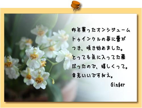 b0066947_22443913.jpg