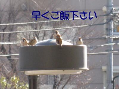 b0158061_2151257.jpg