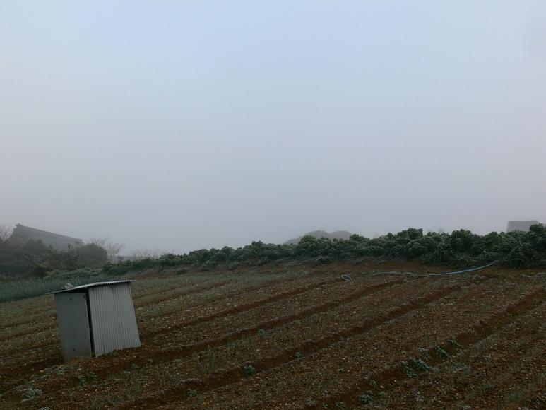 「霧の朝」_d0133024_9411712.jpg