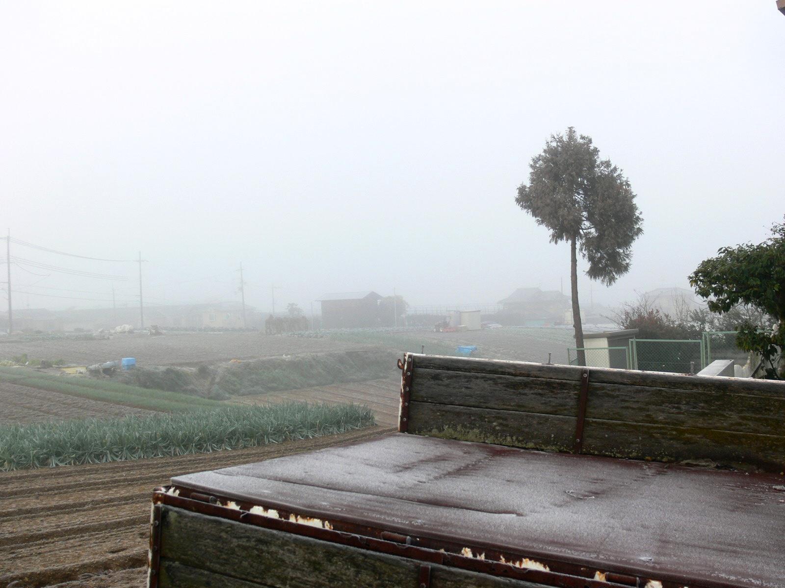 「霧の朝」_d0133024_9412880.jpg