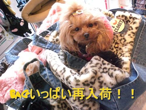 UPCOLORS新作入荷!!_b0084929_1434551.jpg