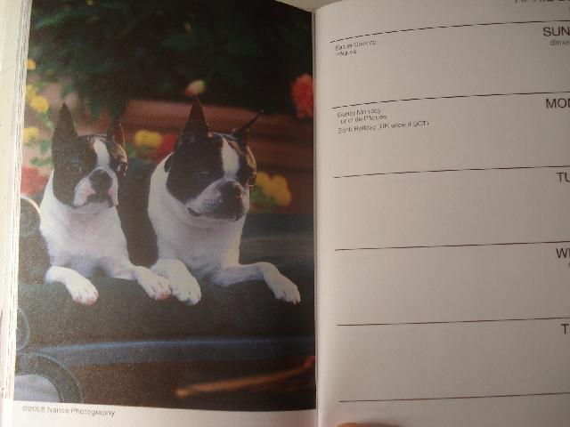 ☆今年の手帳☆_d0089157_1335416.jpg