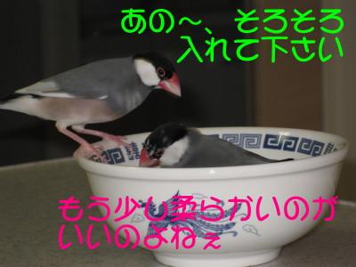 b0158061_20241049.jpg