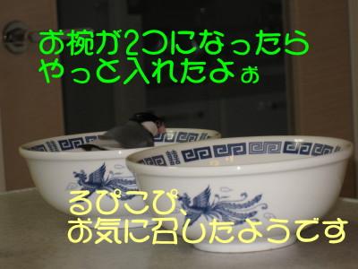 b0158061_20245141.jpg