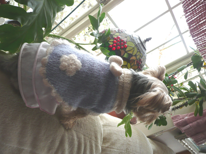 Sweaters for angels - 天使たちのセーター -_f0186787_15102414.jpg