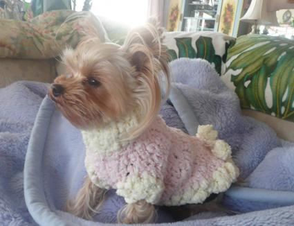 Sweaters for angels - 天使たちのセーター -_f0186787_15135715.jpg