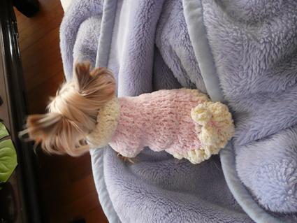 Sweaters for angels - 天使たちのセーター -_f0186787_15142042.jpg