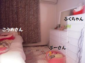 c0139488_1661172.jpg