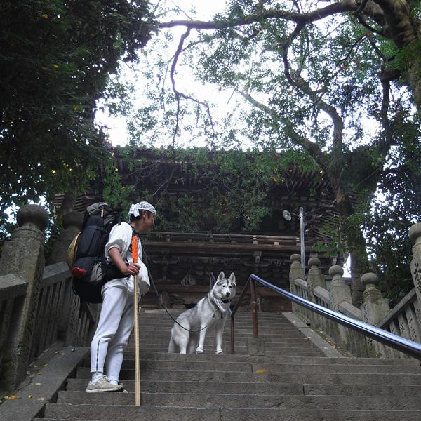 12月4日 おへんろ24日め♪ by GX100_c0049299_20101060.jpg