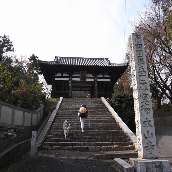 12月4日 おへんろ24日め♪ by GX100_c0049299_2010182.jpg