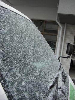 季節は冬です。_b0131012_962579.jpg