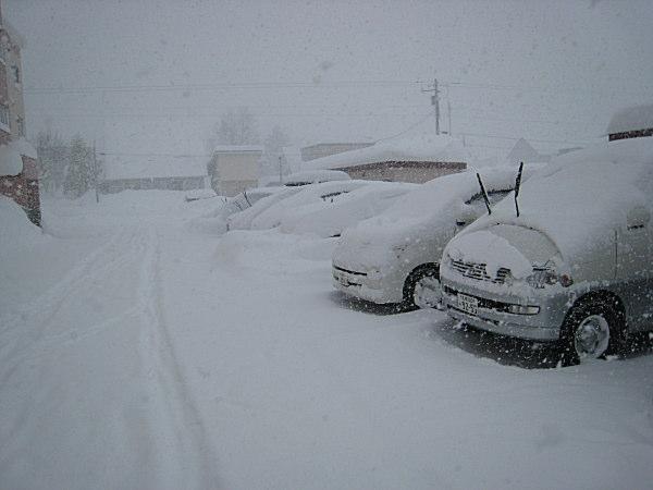 豪雪地帯_a0071514_2364010.jpg