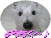 f0084422_0405298.jpg
