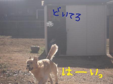 f0176830_17525641.jpg
