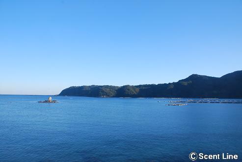 京都から和歌山へ_c0099133_0215353.jpg