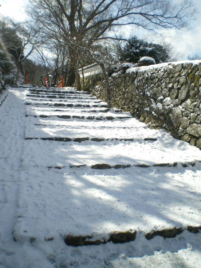 冬の京都_c0168433_8441093.jpg