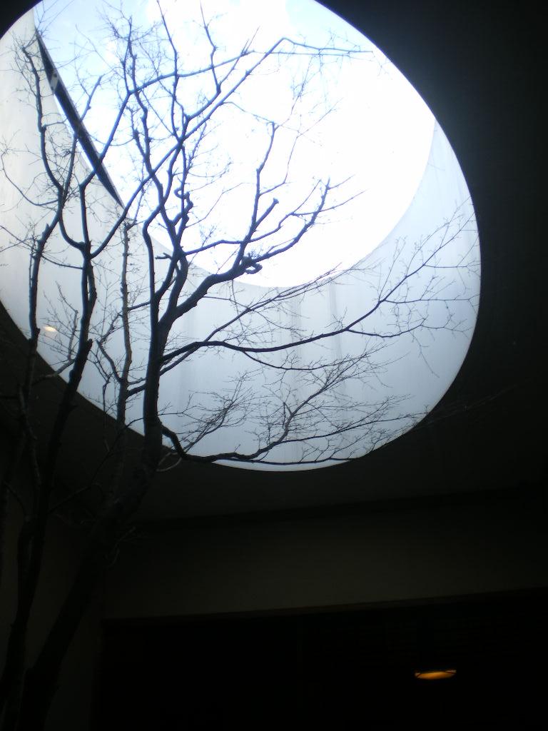 京都 美術館~食べ物編_c0168433_934088.jpg