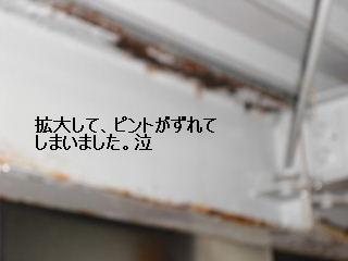 f0031037_19593231.jpg