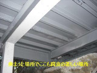 f0031037_2005960.jpg