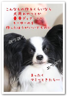 d0013149_928366.jpg
