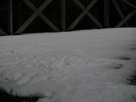雪景色_e0119661_121294.jpg