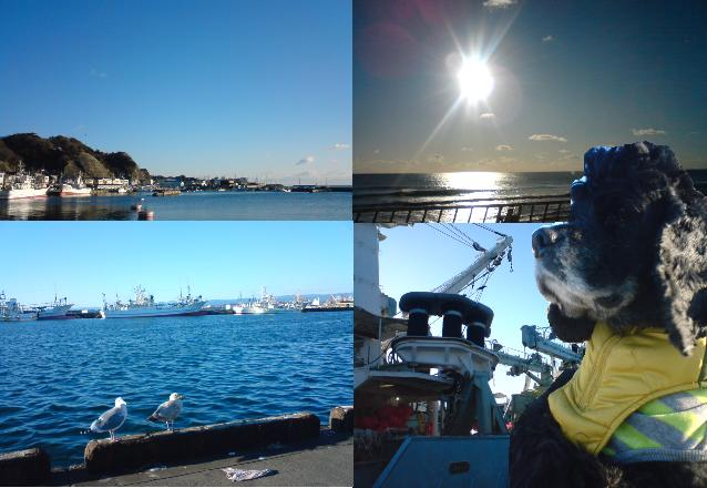 海よぉ~俺の海ぃ~よぉ~♪/なつおさんの心地いい場所♪_f0096569_2258515.jpg