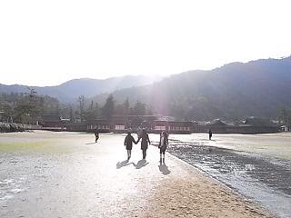 朝の風景_e0155771_9315422.jpg