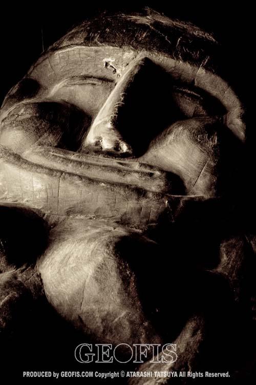 写真展「南の精霊たち」・・・鶴ヶ島・ギャラリーううふ_b0007284_176189.jpg