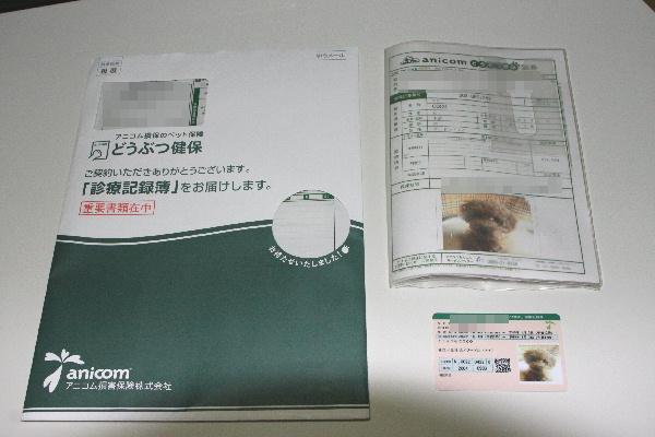 f0118293_194217100.jpg