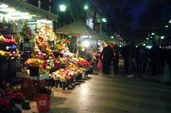 バルセロナのフラワーストリート_c0182100_21464066.jpg