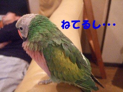 c0133013_13584029.jpg