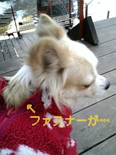 f0148927_1864277.jpg
