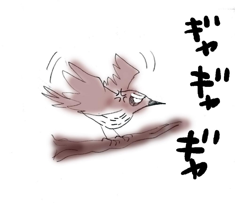a0075228_16593539.jpg