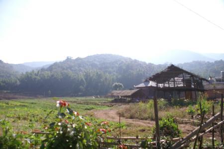 雲南で_c0177135_20341139.jpg