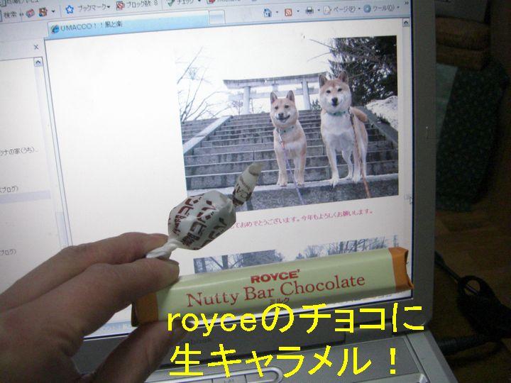 f0053952_20234828.jpg
