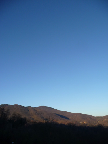 悲しい冬の朝_f0106597_16411881.jpg