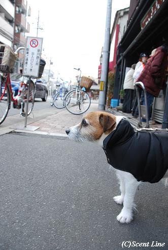 京都 最終日のこと_c0099133_2083433.jpg